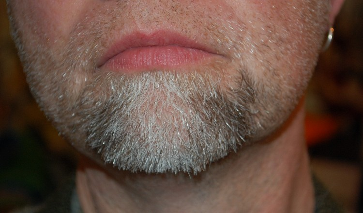 scotts beard day 4